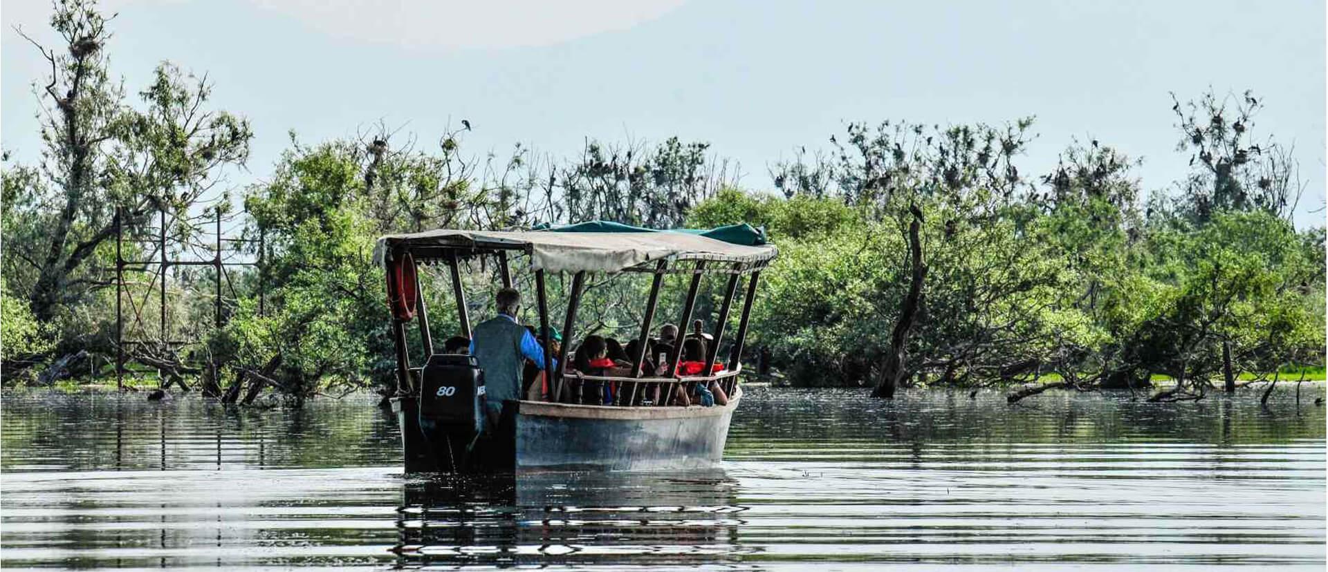 Kerkini Lake: Boating and Horse Riding Experience